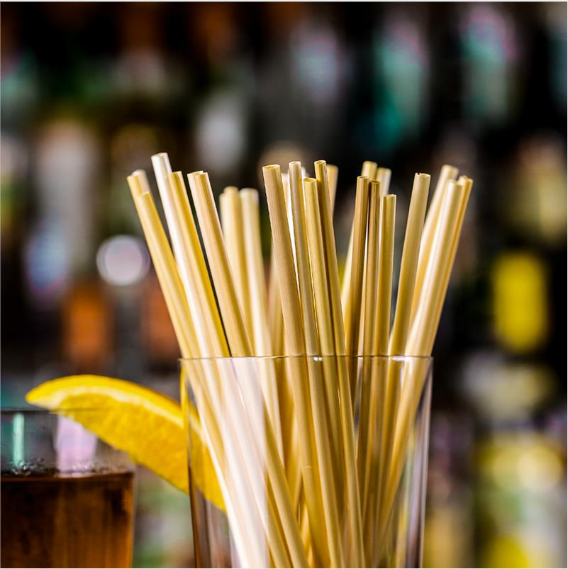 Sustainable environmentally friendly straws