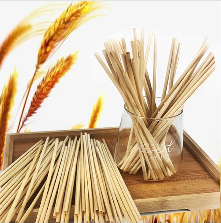 Biodegradable wheat straws wholesale